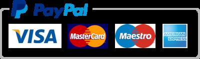 icon-paypal-card-nywzudr9k0u2il2h18m3ovu0ky2buh1wo0voneyrae Payments Portal | Bachelor Party Cartagena
